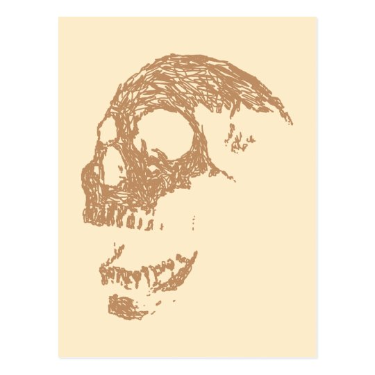 Brown Skull Design. Postcard