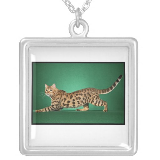 Brown Spotted Bengal Necklace