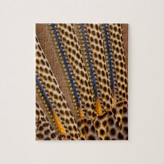 Brown spotted pheasant feather jigsaw puzzle