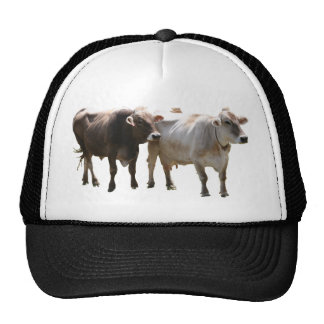 Brown Swiss Cows Mesh Hats