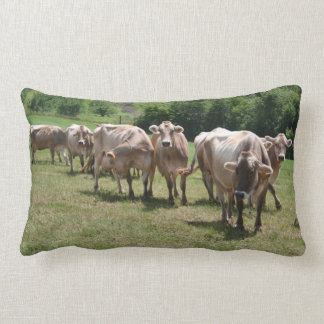Brown swiss nap pillow