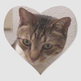 Brown Tabby Heart Stickers