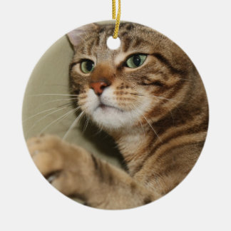 BROWN TABBY ORNAMENT