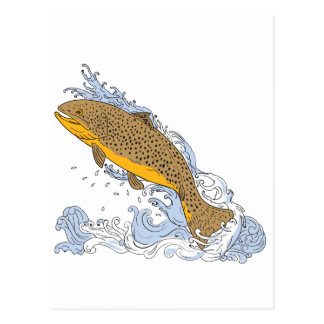 Brown Trout Swimming Up Turbulent Water Drawing Postcard