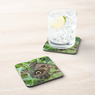 Brown Winged Butterfly Cork Coasters