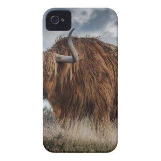 Brown Yak on Green and Brown Grass Field iPhone 4 Case-Mate Case