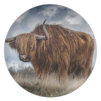 Brown Yak on Green and Brown Grass Field Plate