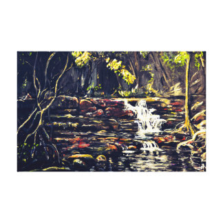 Brown's Falls Cascades Canvas Print