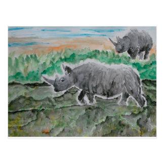 Browsing Rhinos Postcard