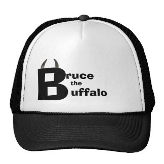 Bruce the buffalo  hat with horns