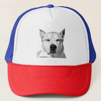 Bruce's hat