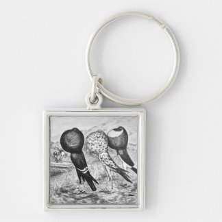 Brunner Pouter Pigeons Key Ring