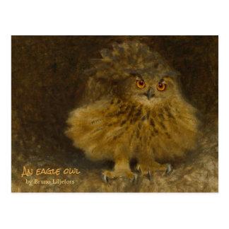 Bruno Liljefors Eagle owl CC0710 Wildlife Postcard