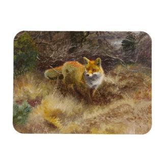 Bruno Liljefors - Fox and Landscape Rectangular Photo Magnet
