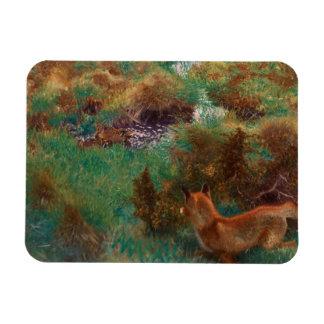 Bruno Liljefors - Fox Stalking Wild Ducks Rectangular Photo Magnet