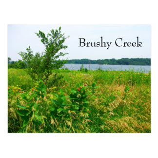 Brushy Creek, Iowa Postcard