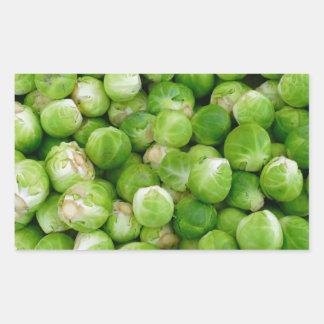 Brussels cabbage rectangular sticker