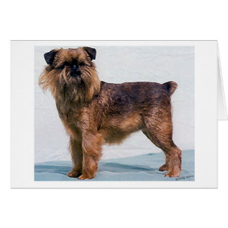 Brussels Griffon Dog Portrait Blank Greeting Card