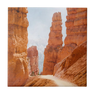 Bryce Canyon National Park Trail Ceramic Tile
