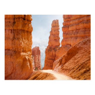 Bryce Canyon National Park Trail Postcard