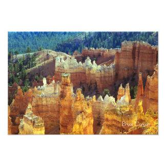 Bryce Canyon Photograph