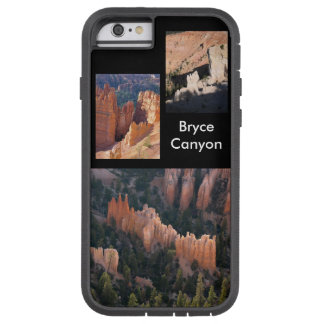 Bryce Canyon Photo Gallery Case