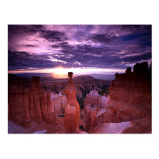 Bryce Canyon Utah National Park Thors Hammer Plain Postcard