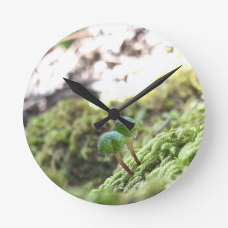 Bryophyta Umbrellas Round Clock