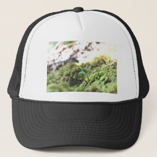 Bryophyta Umbrellas Trucker Hat