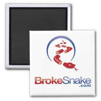 BS logo snake top Magnet