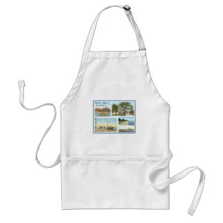 BSL-Scenes of the Past Adult Apron