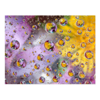 Bubbles abstract with flowers. Credit as: Nancy Postcard