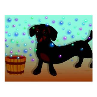 Bubbles Doxie Postcard