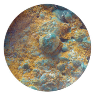 Bubbly Turquoise with Rusty Dust Dinner Plates