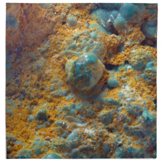 Bubbly Turquoise with Rusty Dust Napkin