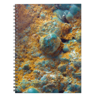 Bubbly Turquoise with Rusty Dust Notebook