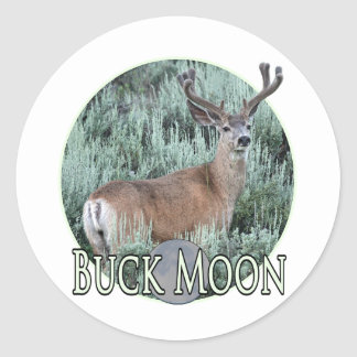 buck moon classic round sticker