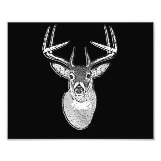 Buck on Black  White Tail Deer Photo Print