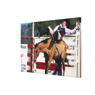 BUCKING BRONCO AT RODEO 3 CANVAS PRINT