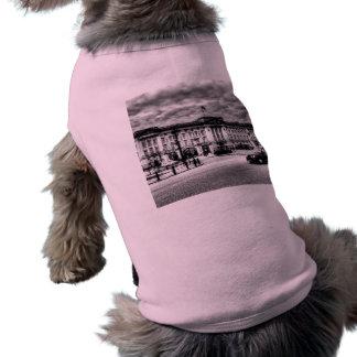 Buckingham Palace Dog Clothes