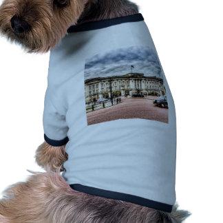 Buckingham Palace Pet Clothing