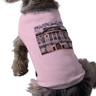 Buckingham Palace London Pet T Shirt