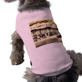 Buckingham Palace Vintage Dog Clothing
