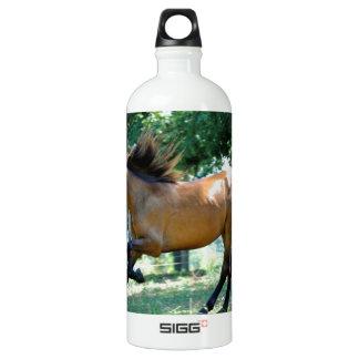Buckskin Morgan Horse SIGG Traveller 1.0L Water Bottle