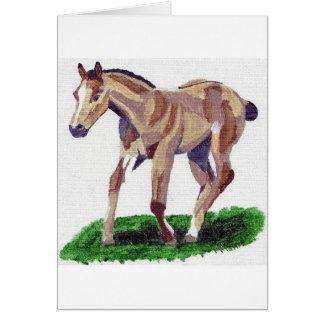 Buckskin Quarter Horse Foal Blank Greeting Card