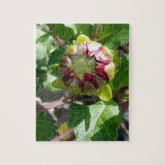 bud in autumn jigsaw puzzle