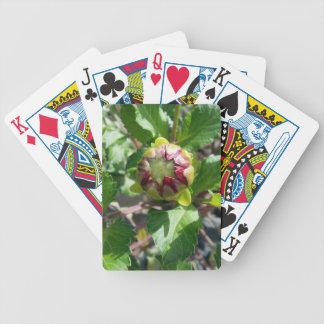 bud in autumn poker deck