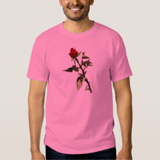 Bud of the red rose penciled tee shirts