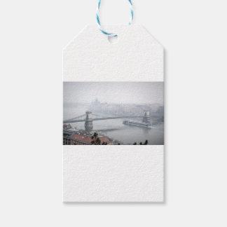 Budapest bridge over danube river picture