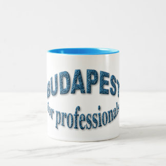 Budapest for Professionals Two-Tone Mug
